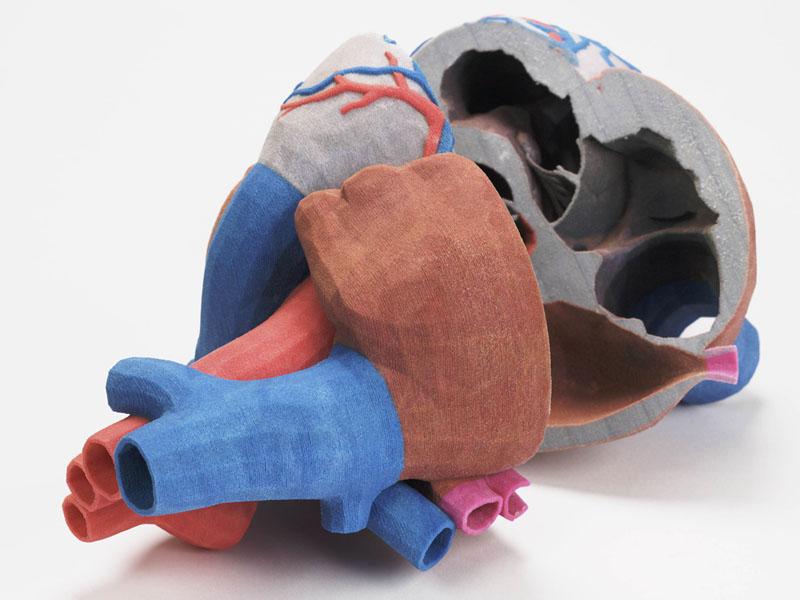 CJP-3D-Druck-Herz-Polymergips